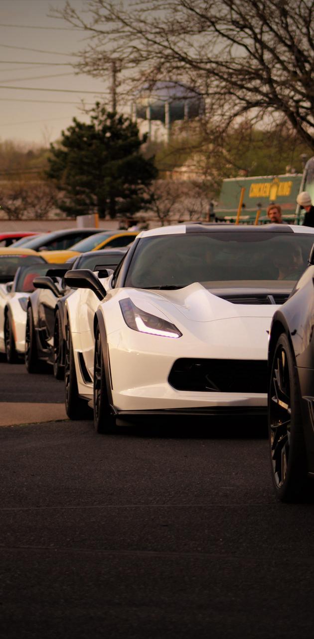 Corvette Corvette