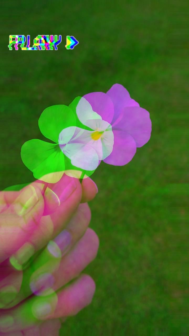 Glitchy Flower
