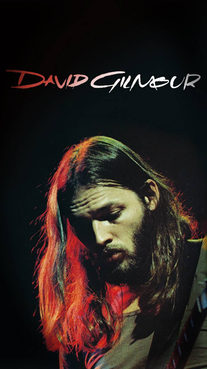 David Gilmour Wallpaper By Legacynichra 60 Free On Zedge