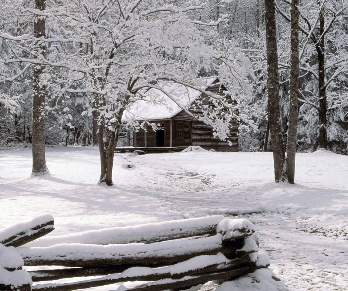 Winter Cabin Wallpaper By Howlingcanoe 72 Free On Zedge