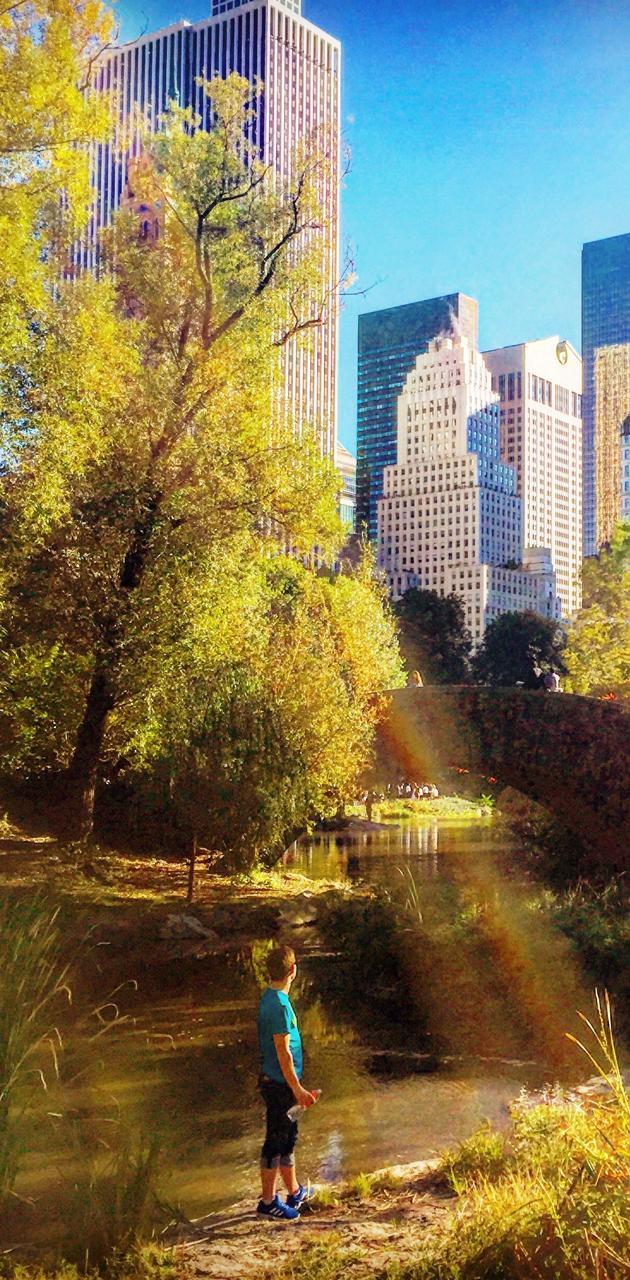 Central Park Sunbeam