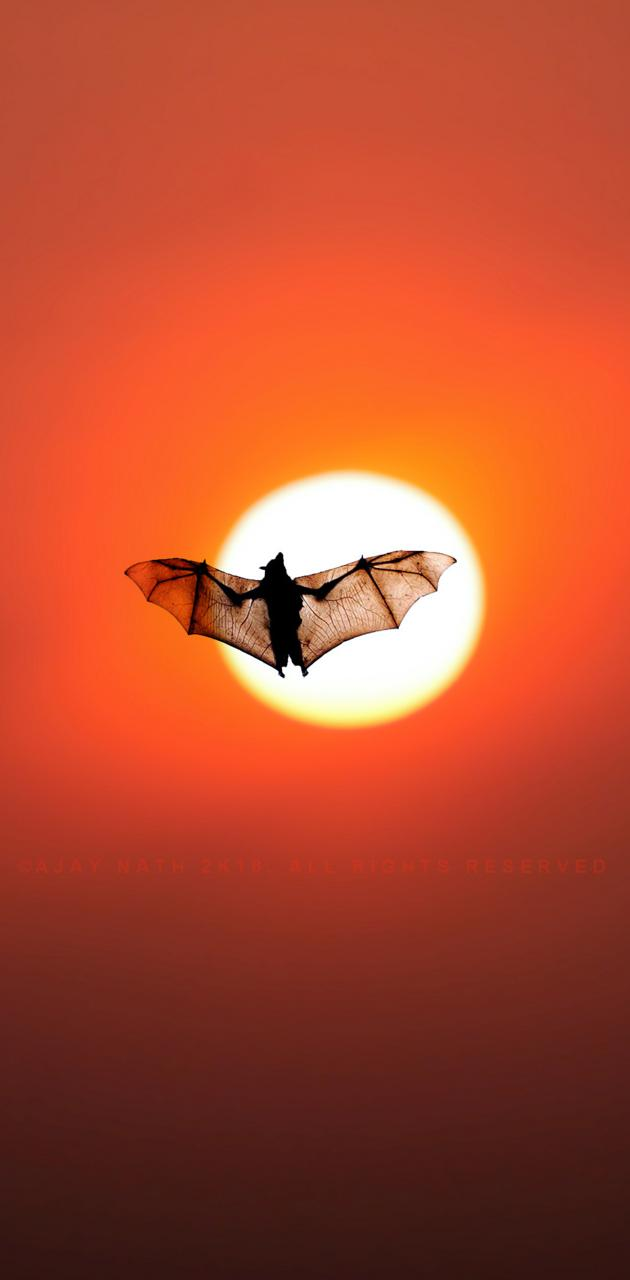 Batman Sunset