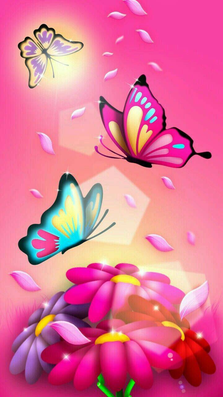 butterflies miracle