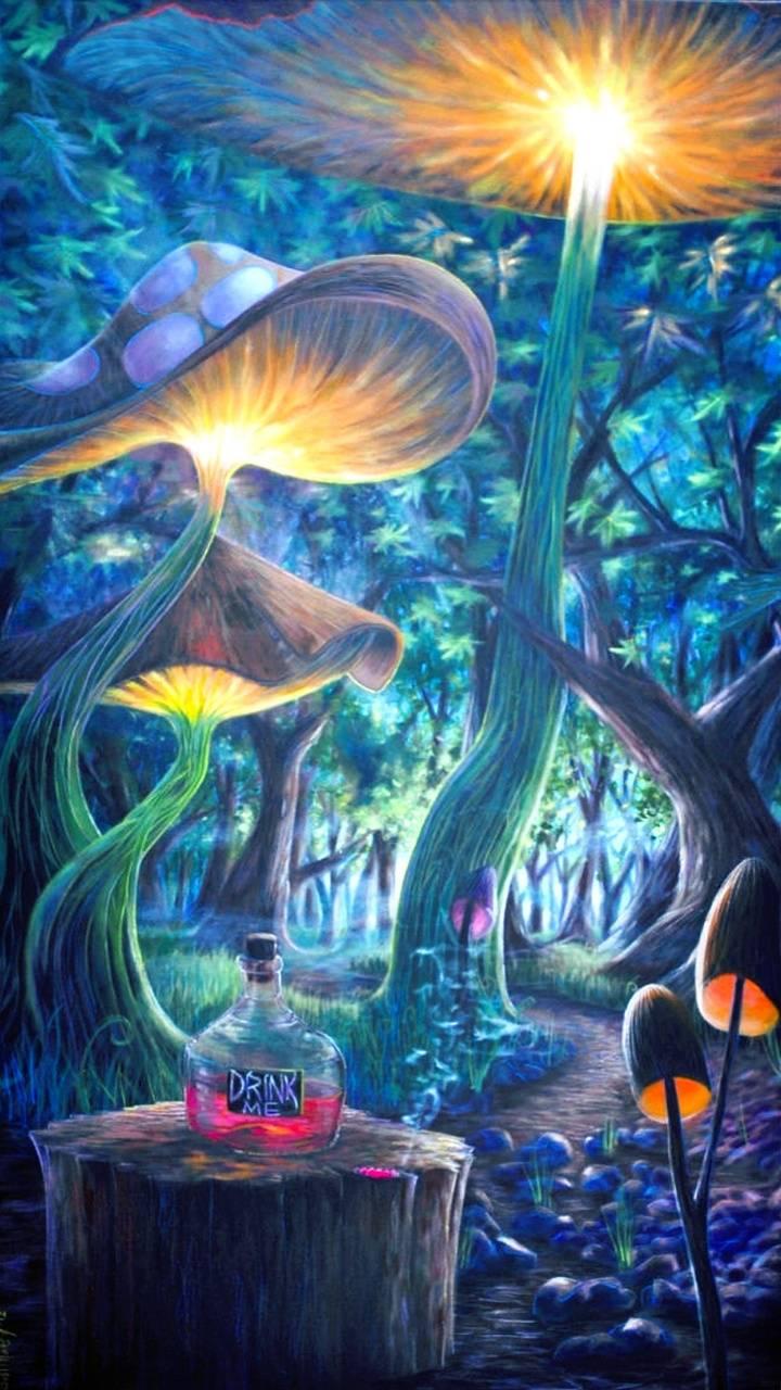 Alice In Wonderland Wallpaper By Sweetlanaz 98 Free On Zedge