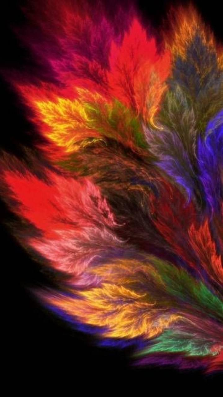 Colors leaf