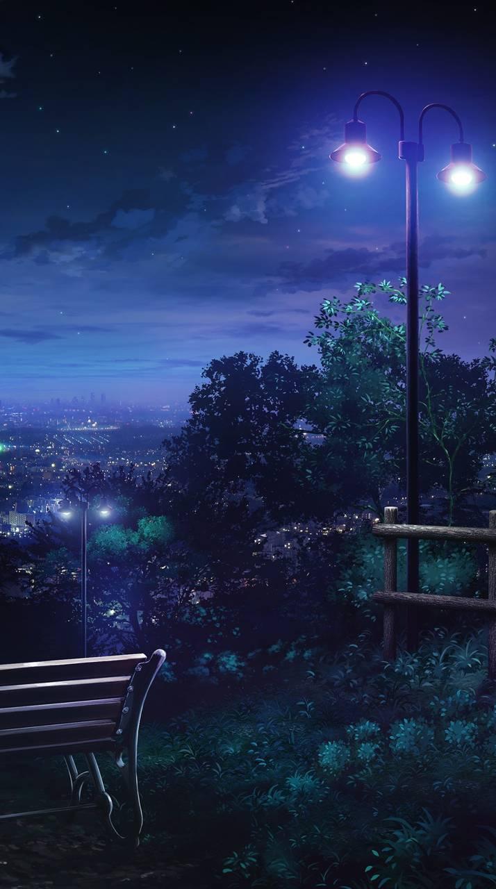 Night sky lights