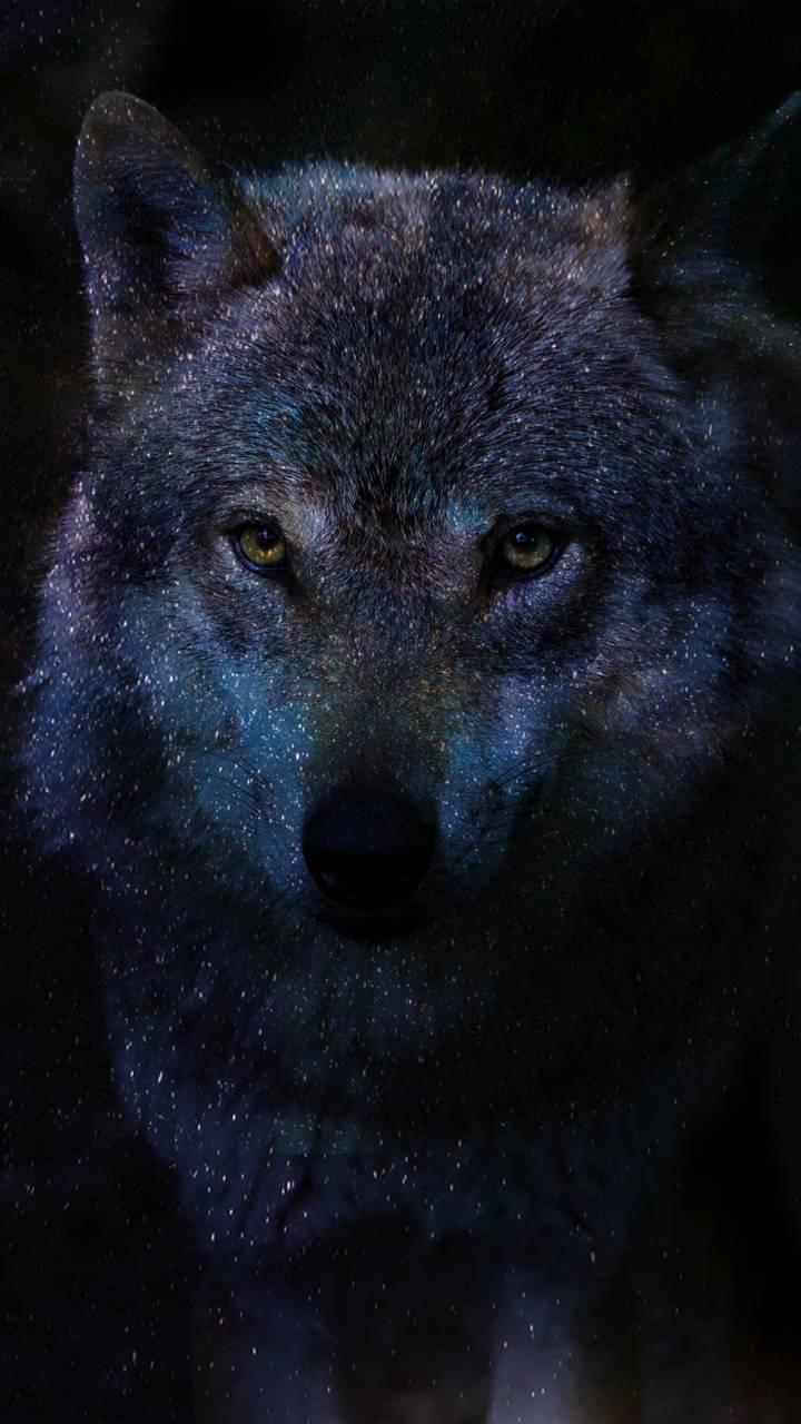 Galaxys Wolf