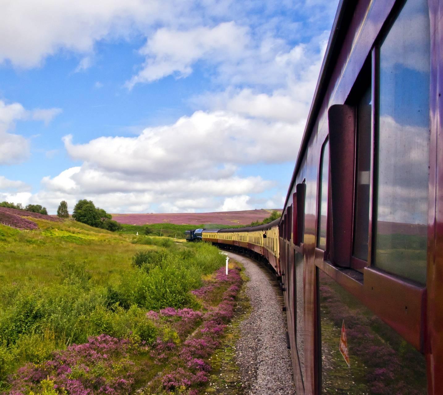 tracks railway