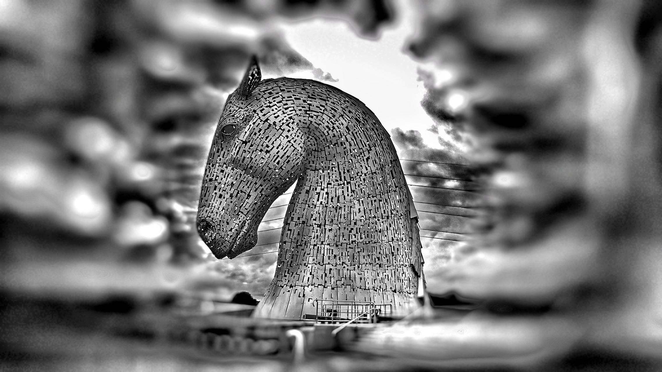 Horse of steele