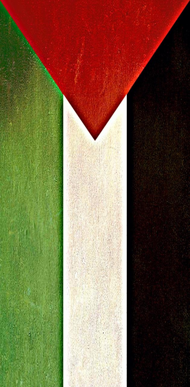 Palestine Flag vert