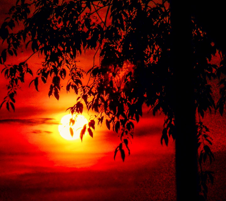 fire sunrise 2014