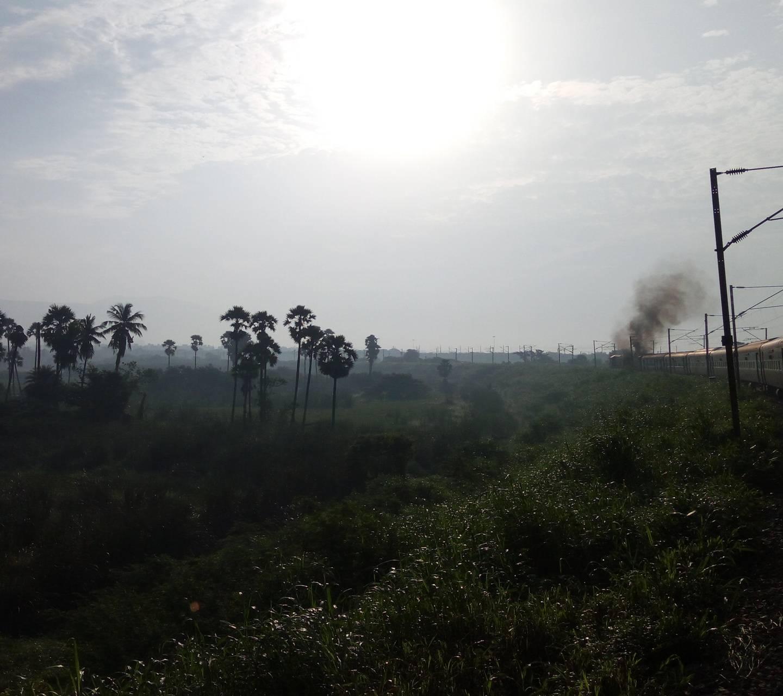 Nature0001