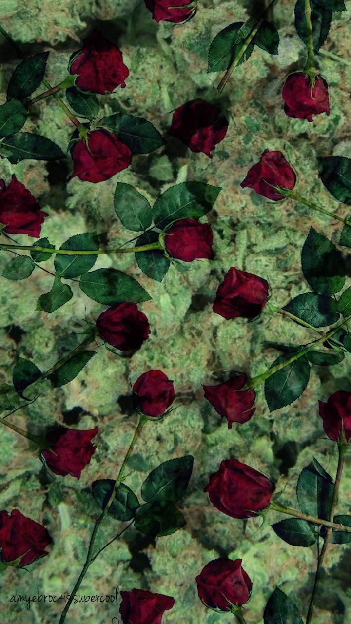 Rosesredweedgreen