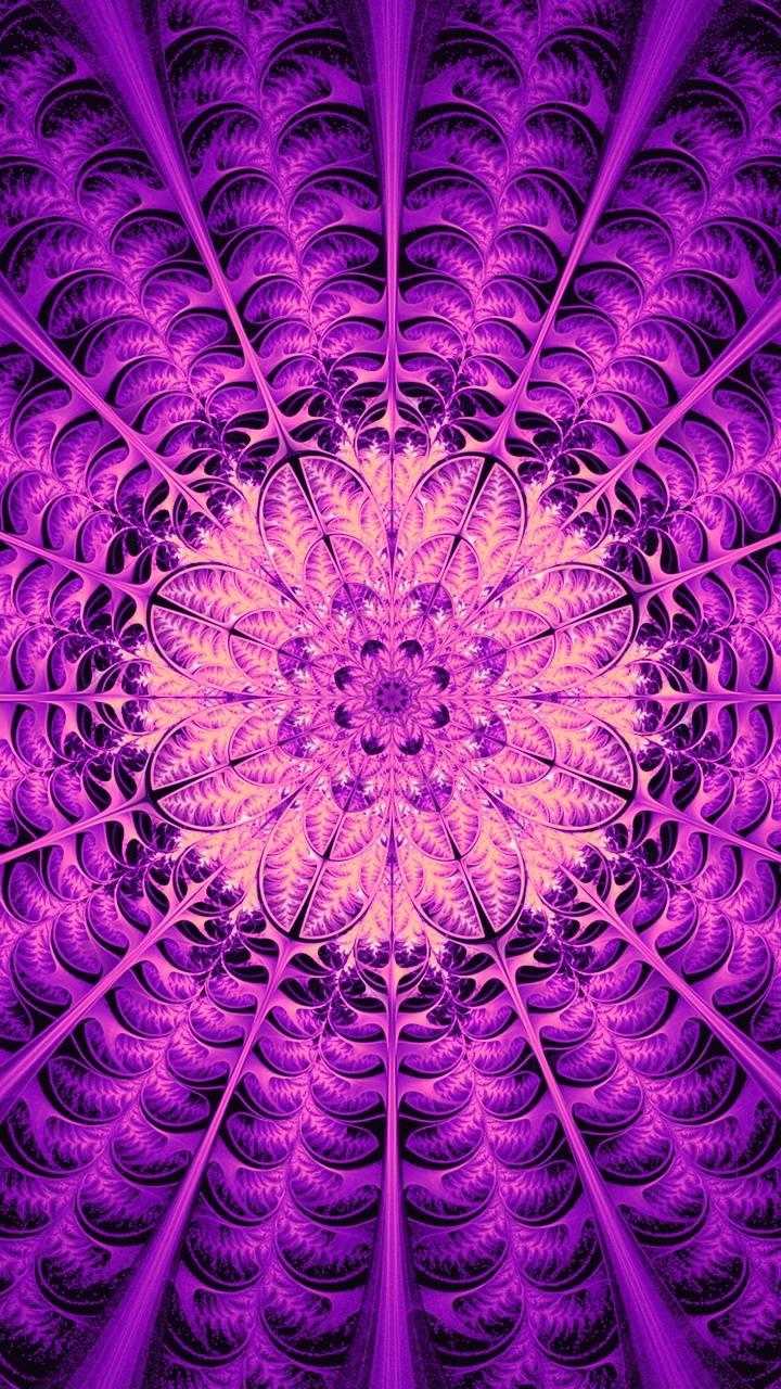 Violet pt two
