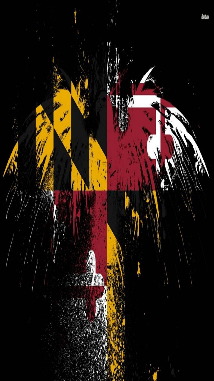 Maryland flag bird