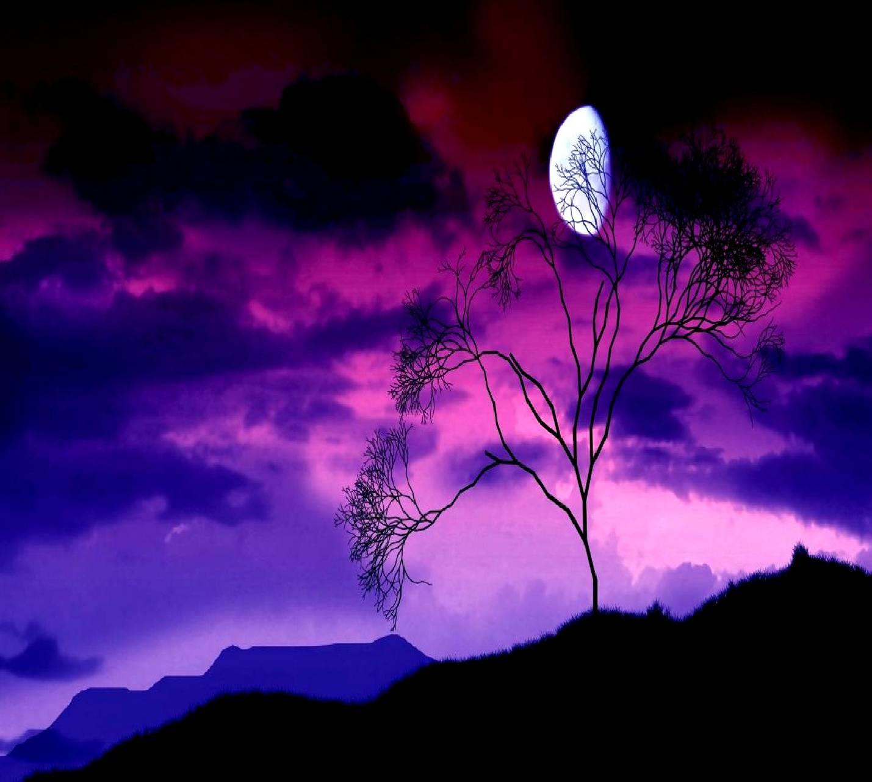 night ------