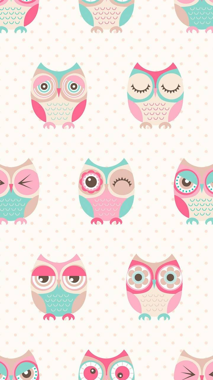 Cute Owl Wallpaper By Queensha 6c Free On Zedge