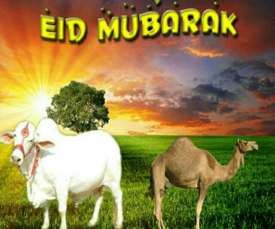 Eid ul azha Mubarak