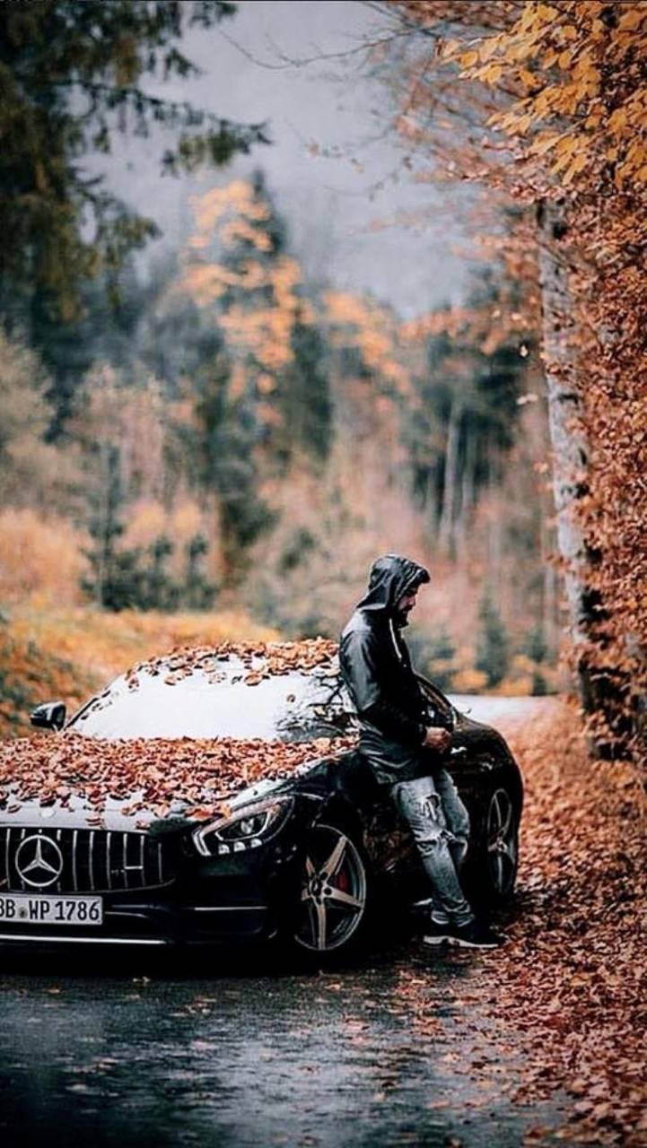 Mercedes Autumn