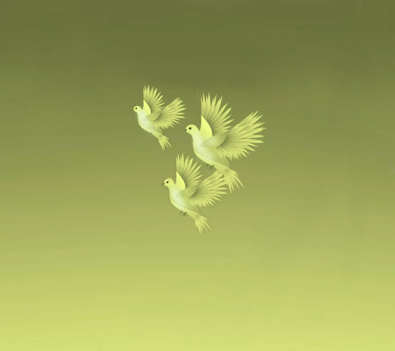 Lovely Birds 5
