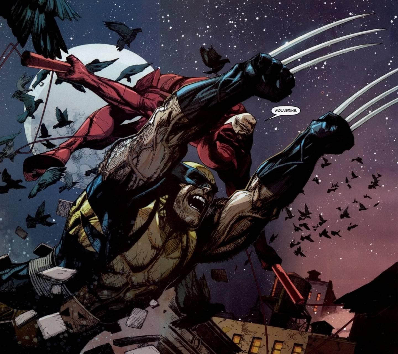 Wolverine Daredevil