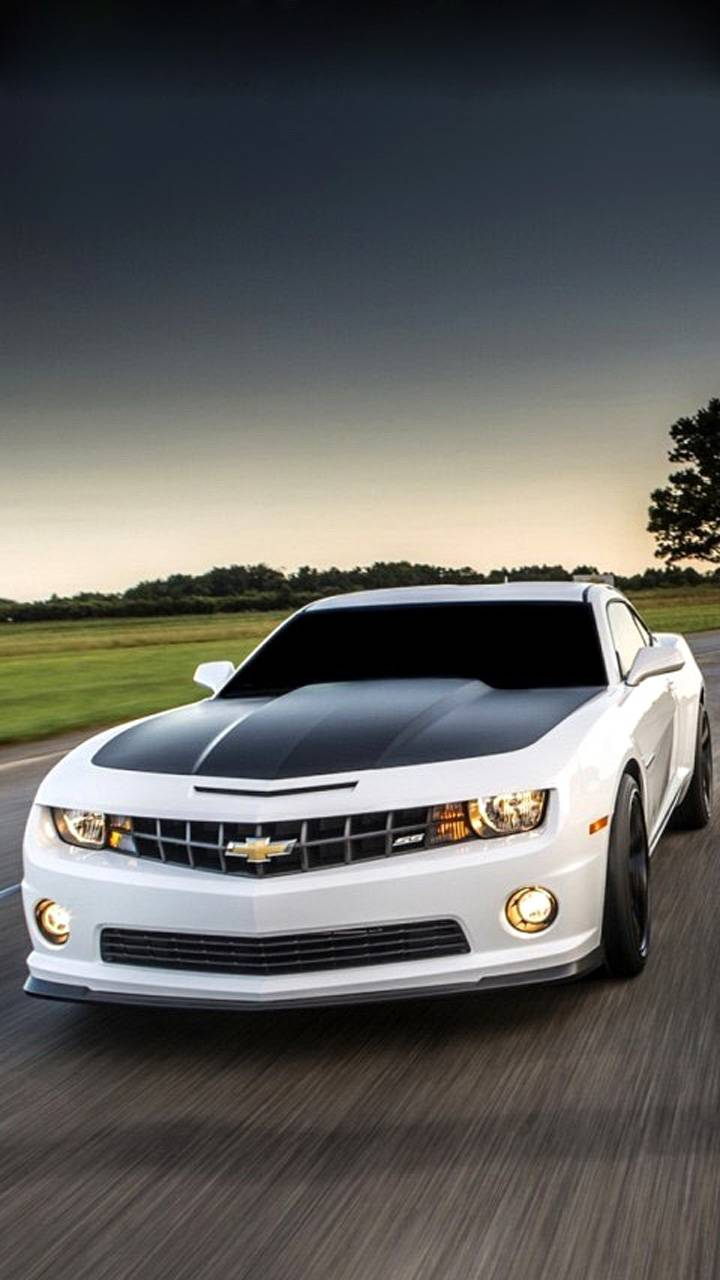 Camaro White
