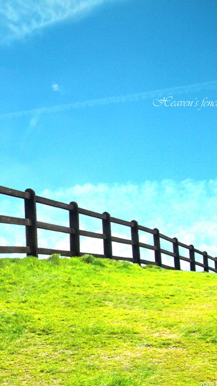 Nature Fence