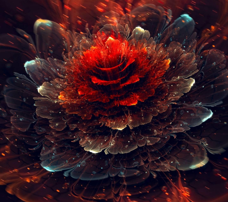 Red Ash Flower
