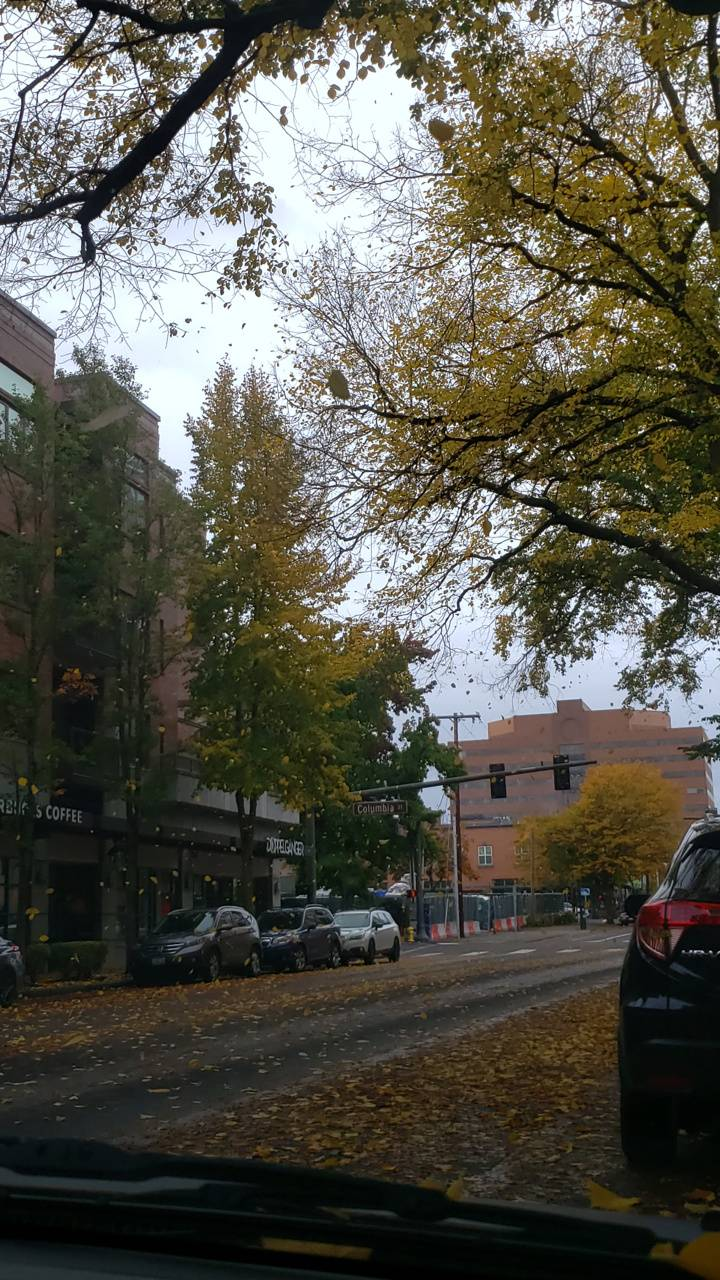 Fall strom