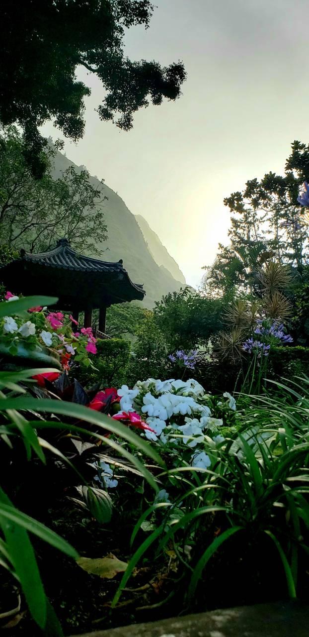 Maui Iao valley