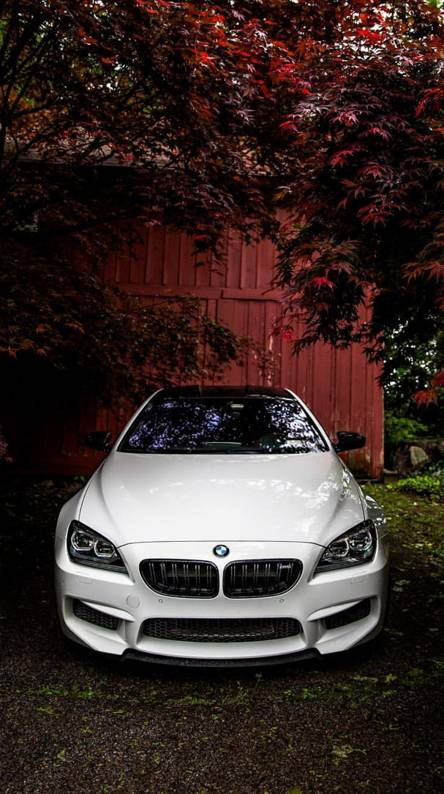 Bmw M6 Wallpapers Free By Zedge
