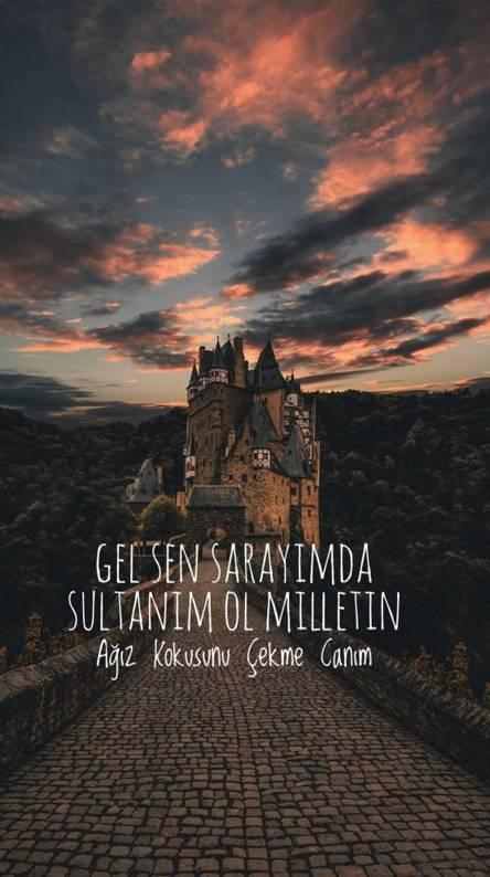Saray ve sultan