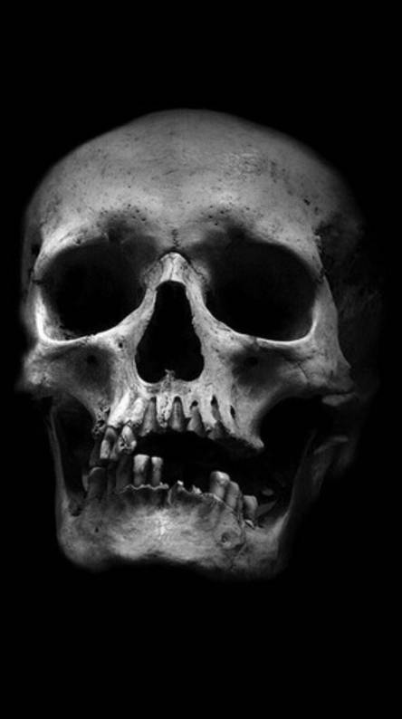Skull Wallpapers - Free by ZEDGE™
