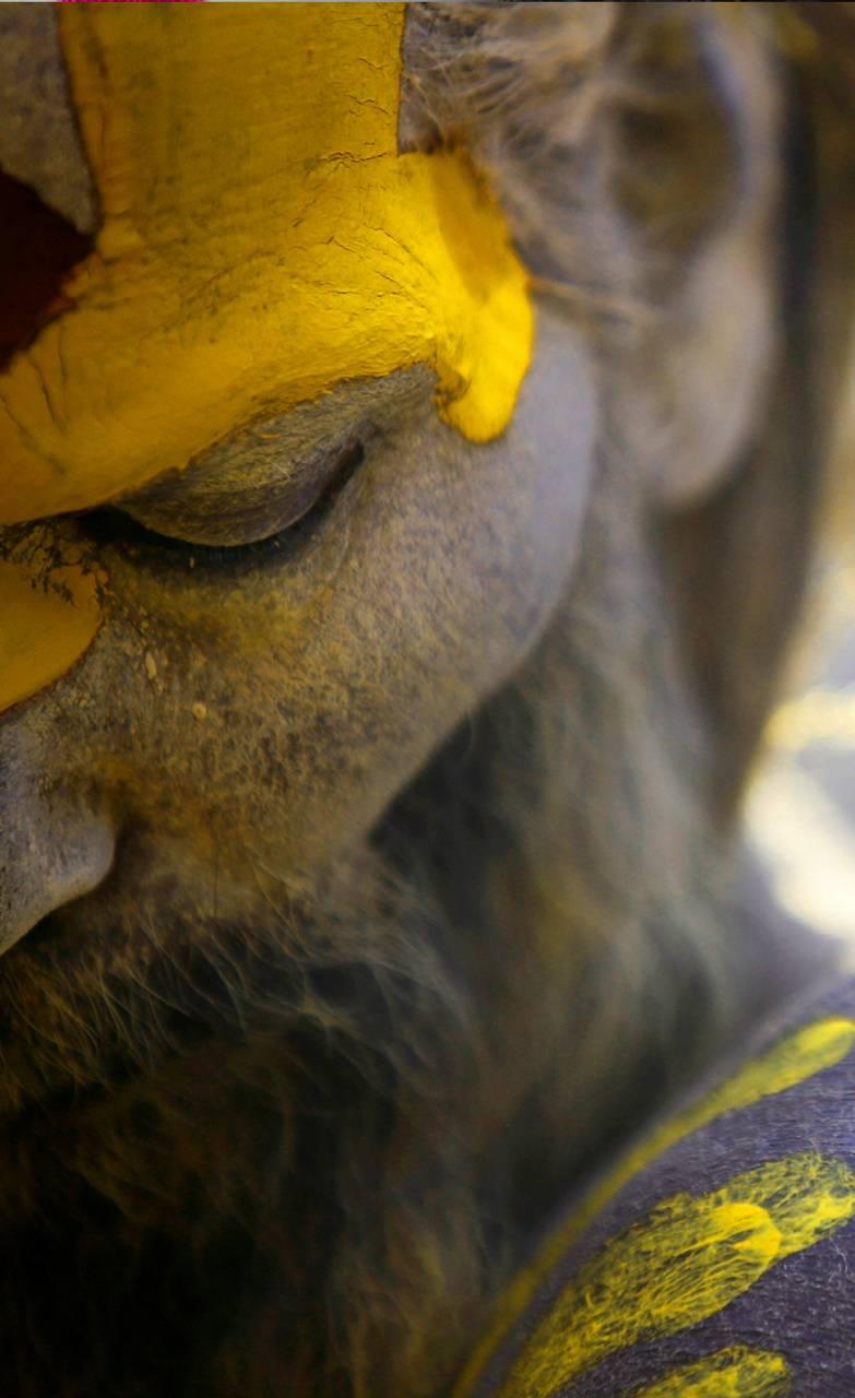 Naga Sadhu2