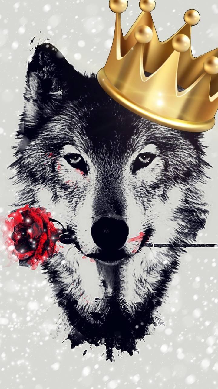 Alpha Wolf Wallpaper By Greekgeek321387 B7 Free On Zedge