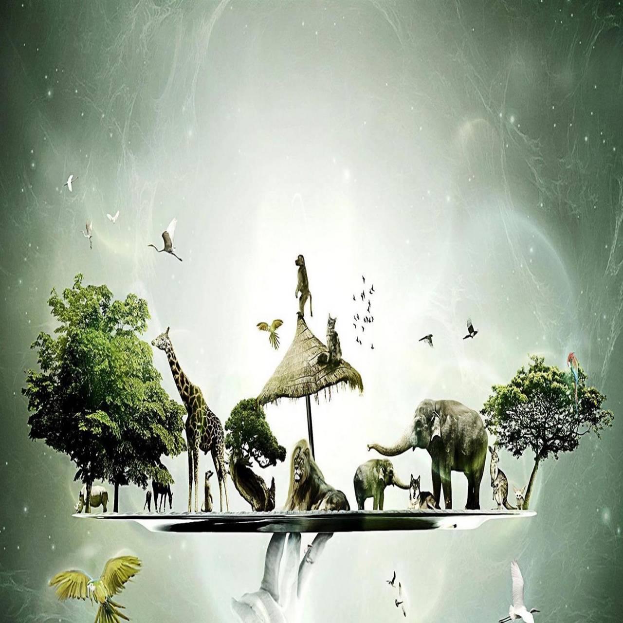 Animal world hd
