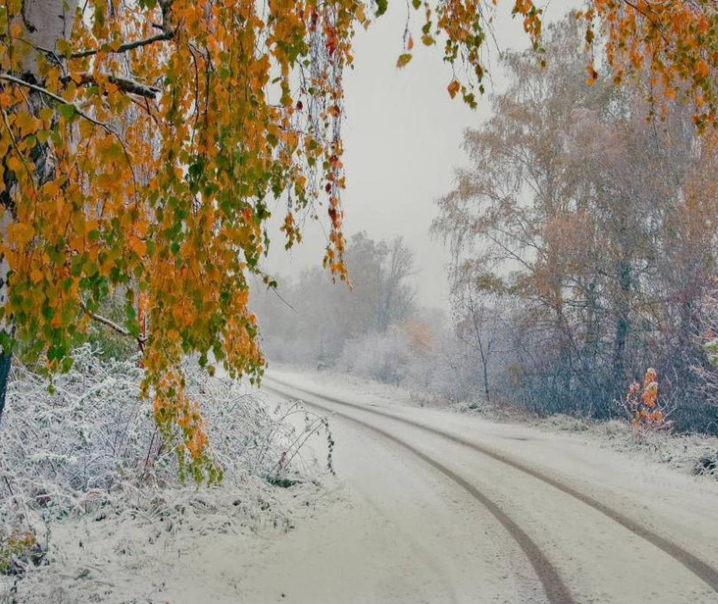 Гифка поздняя осень