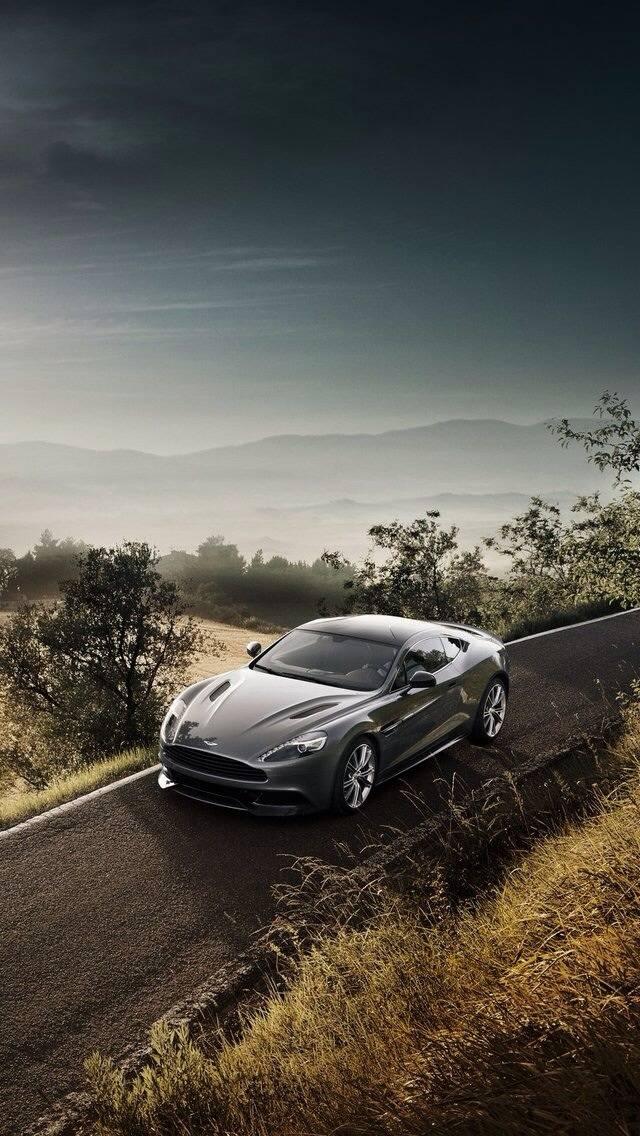 Aston Martin AM 310