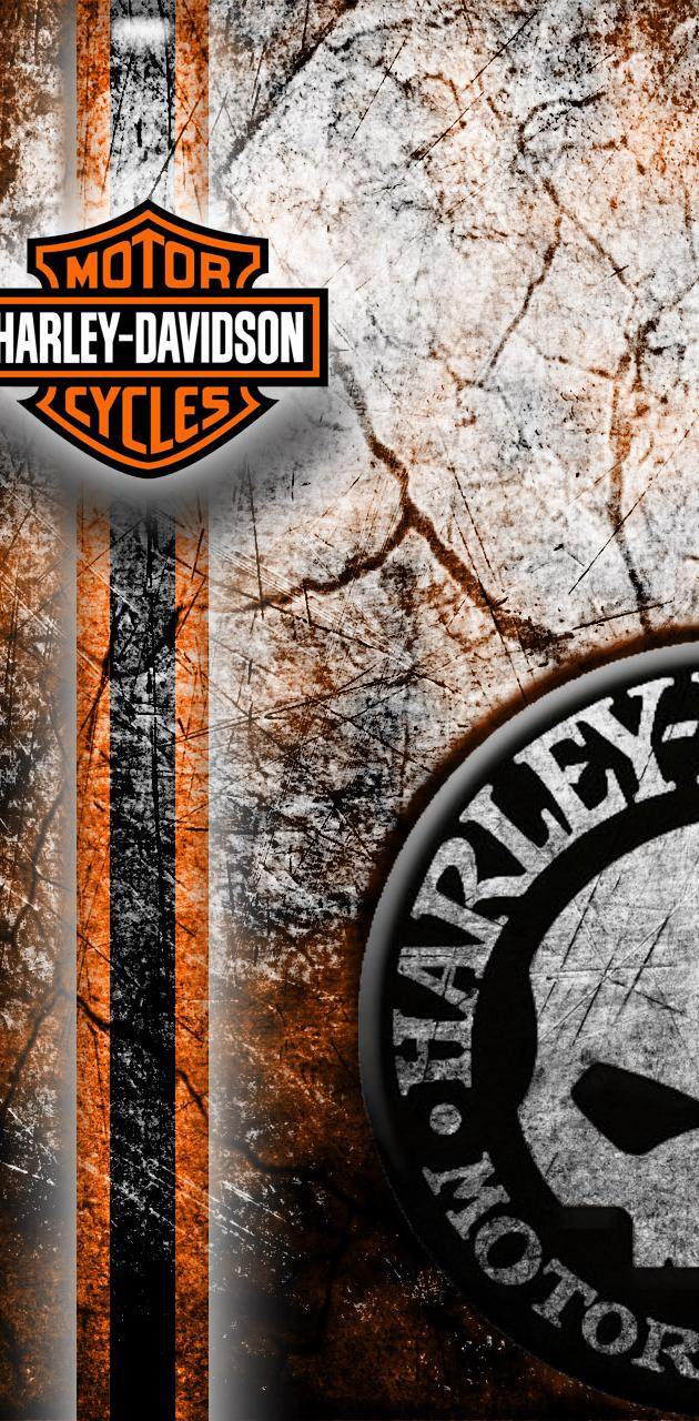 Harley Davidson Wall