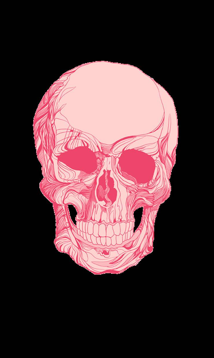 Skull Wallpaper By Ace Of Spades 41 Free On Zedge