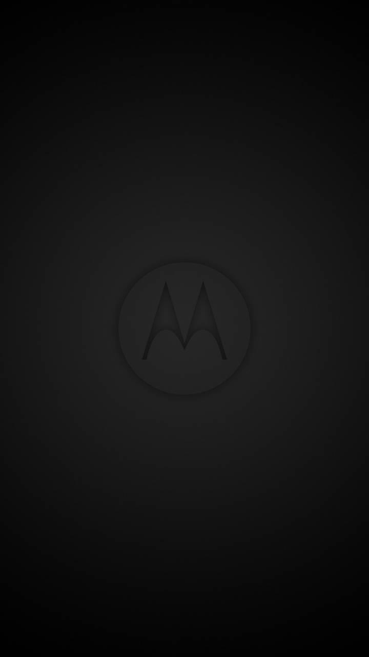 Black Moto