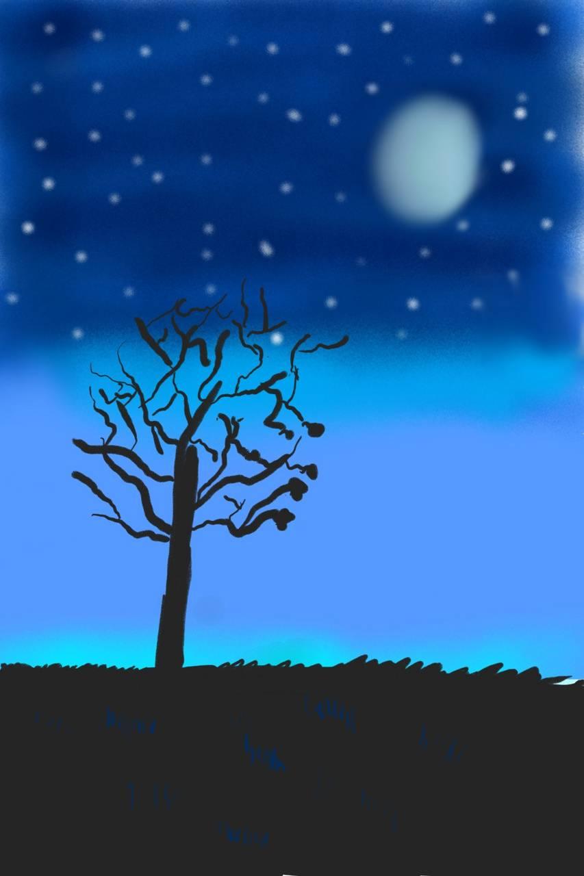 Black tree blue sky