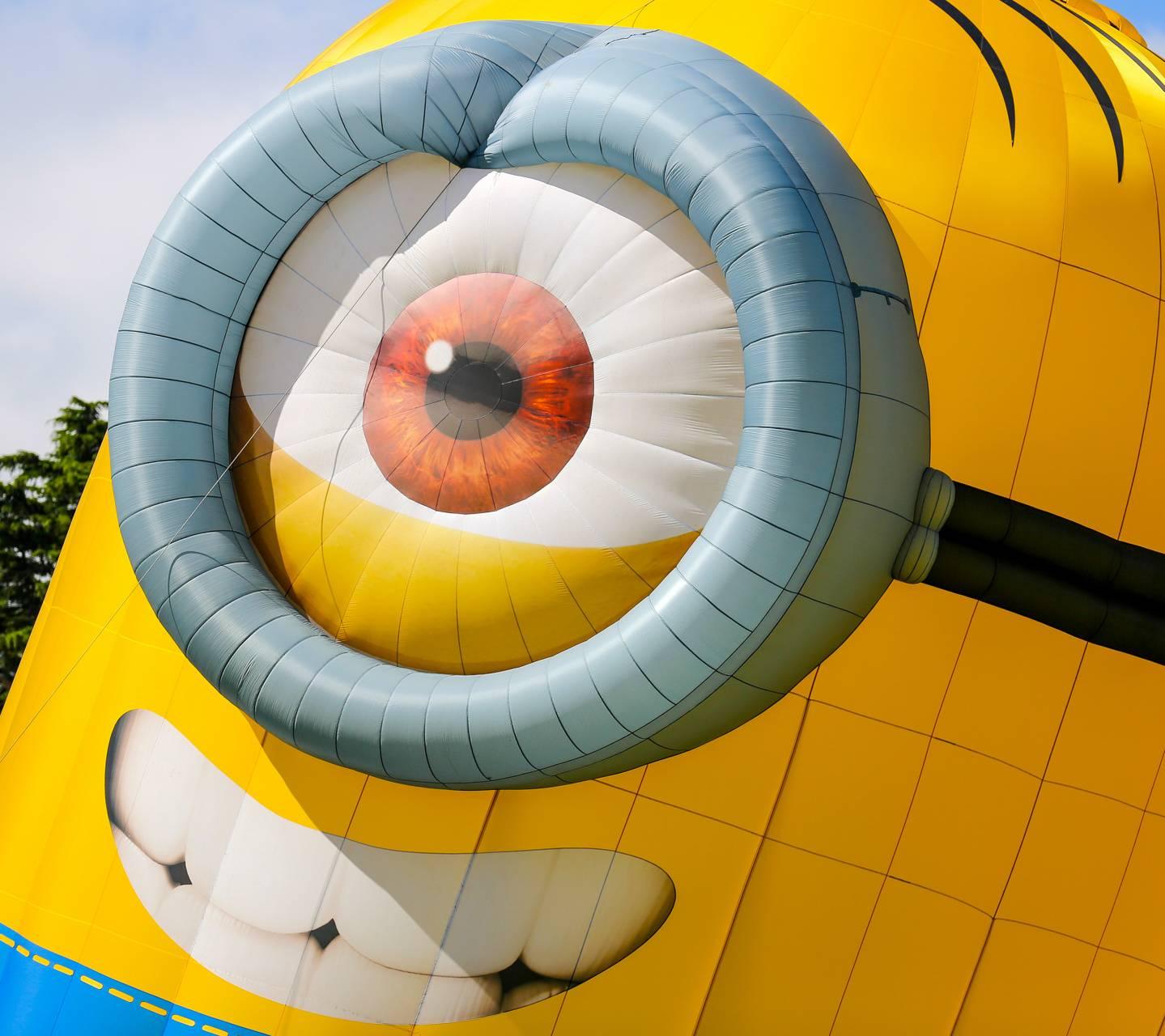 Hot Air Balloon 8