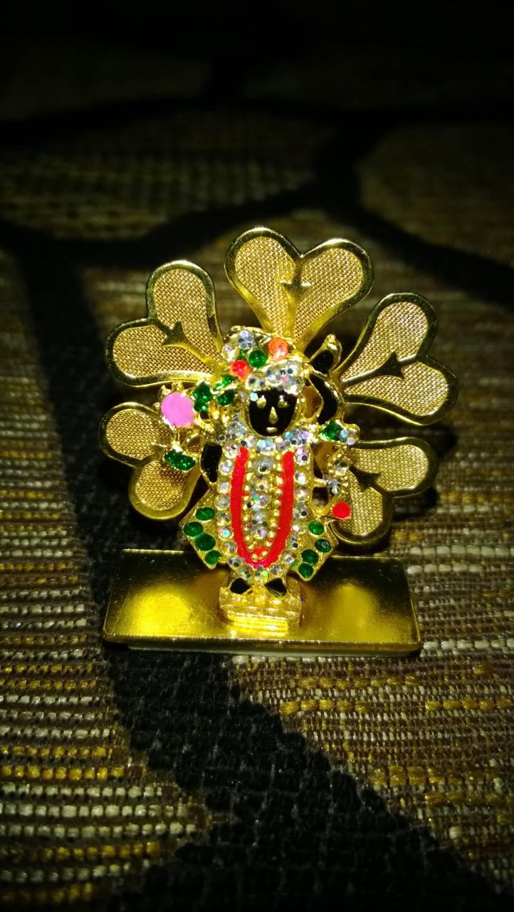 Shree Nathji
