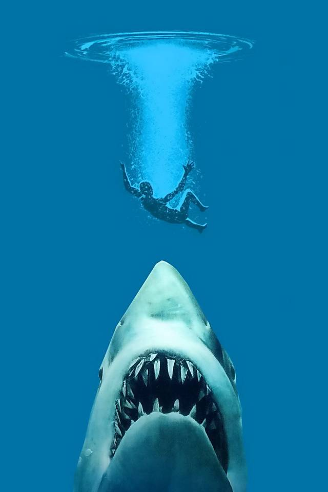Shark Wallpaper By MARIKA