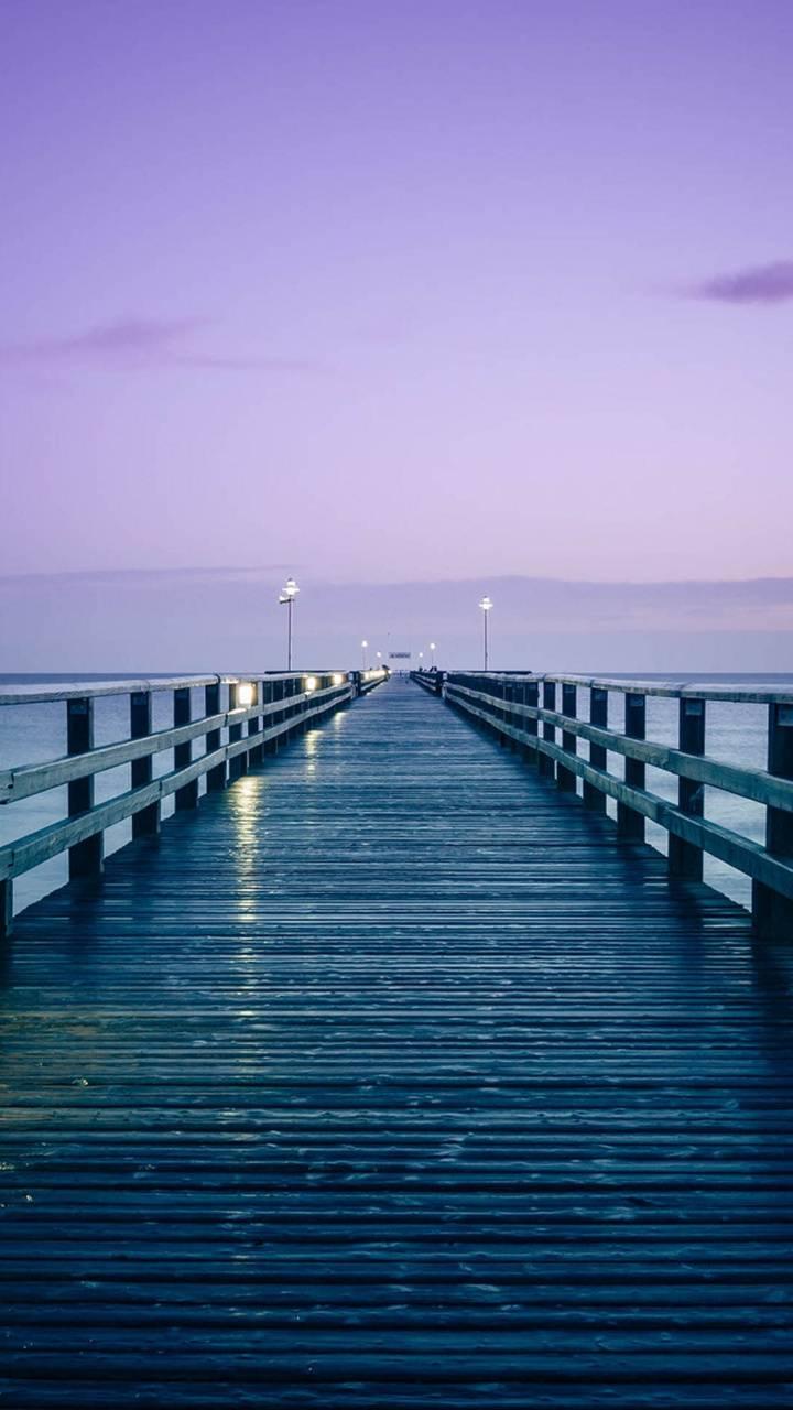 bridge purpple