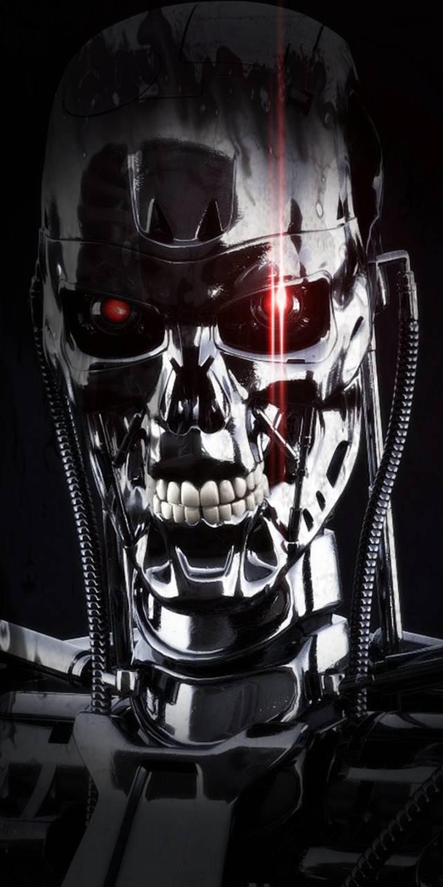 Terminator Chrome