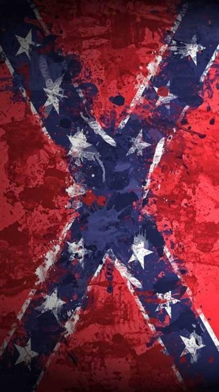 Rebel Flag Painted