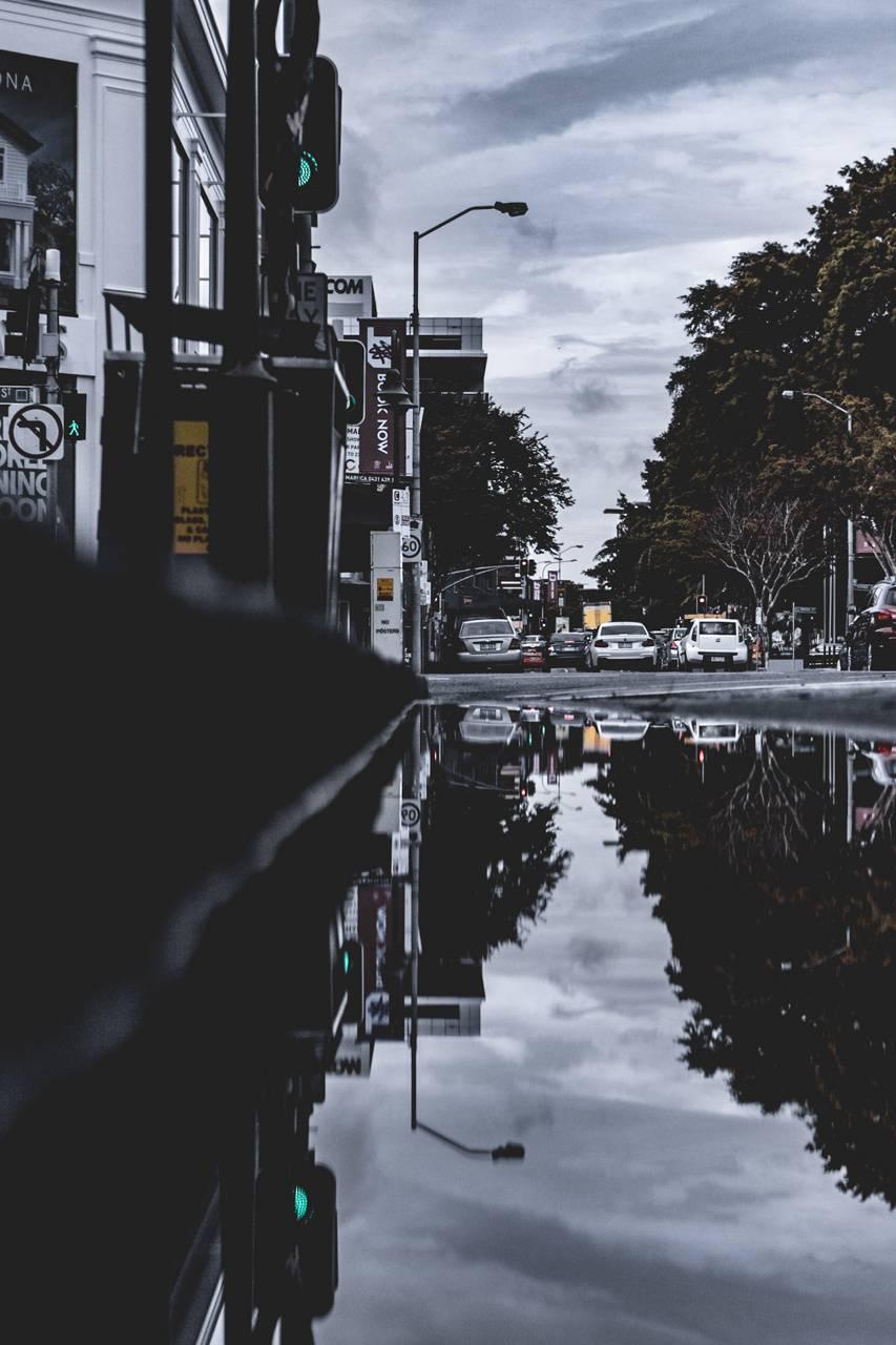 Newstead Refleccy