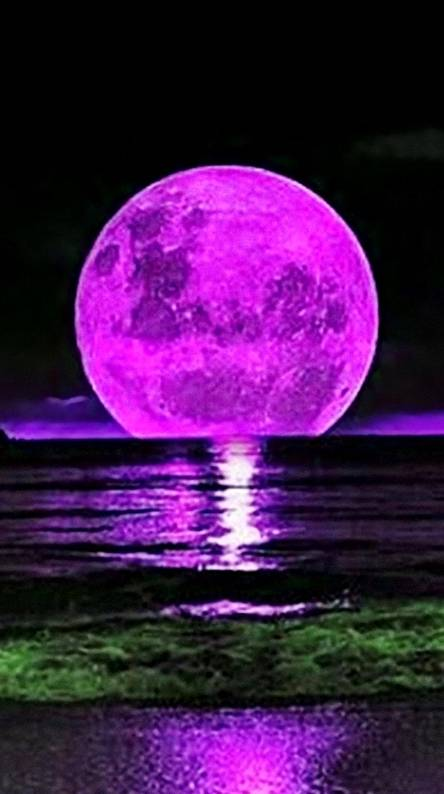 Pink Moon Wallpapers Free By Zedge